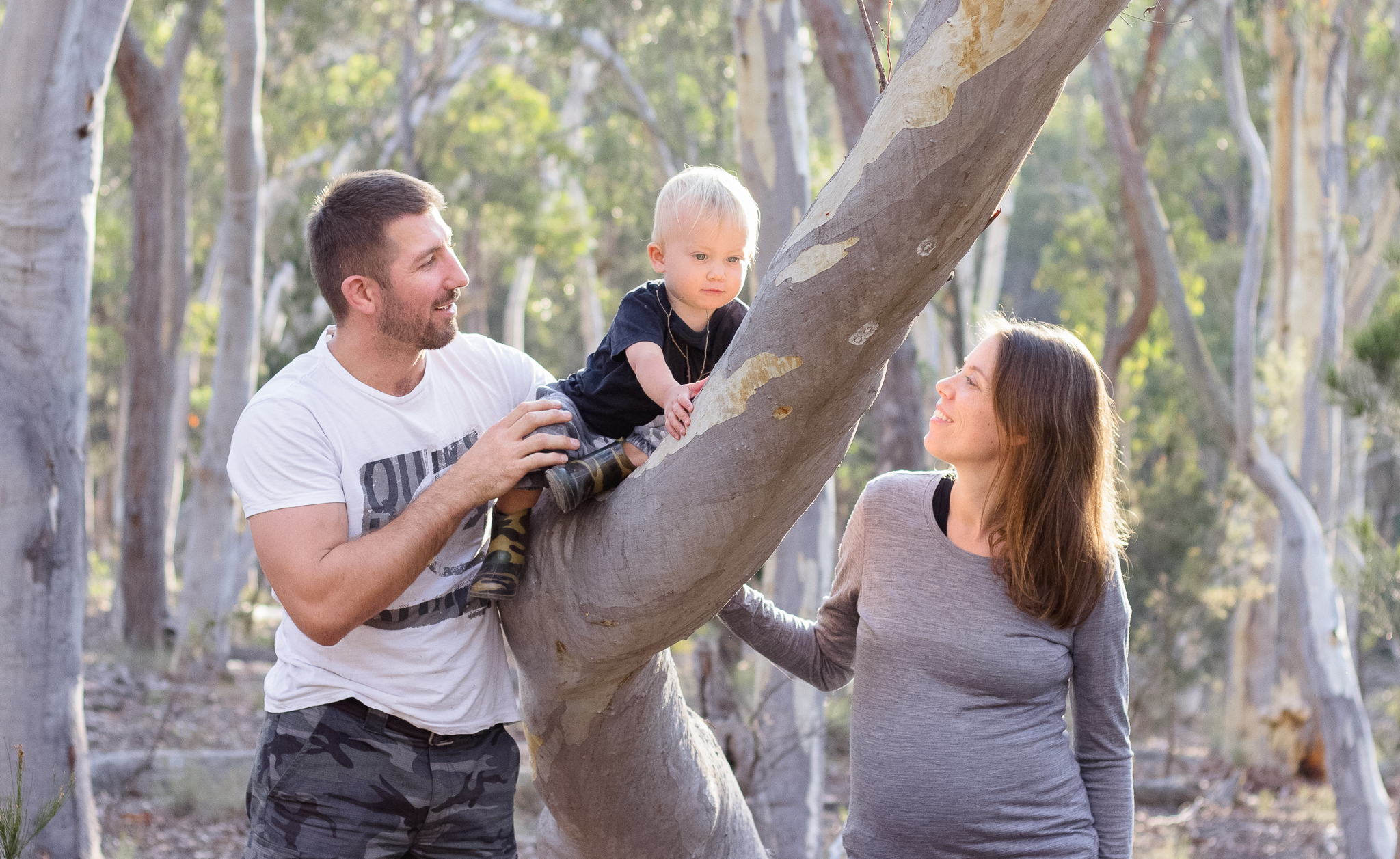 parents and toddler boy in tree